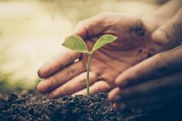 [:es]Lead nurturing: algunas estrategias básicas[:]